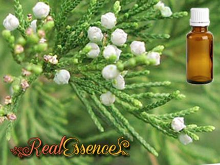 Cedarwood Essential oil 100% Pure and natural essential oil 100ml