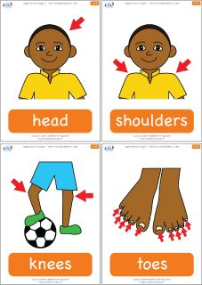 "Parts of the body flashcards for the Super Simple Learning version of ""Head Shoulders Knees & Toes."" #preK #Kindergarten #ESL"
