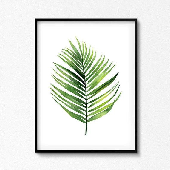 Watercolor Palm Leaf Watercolour Plant Coconut Leaf Poster