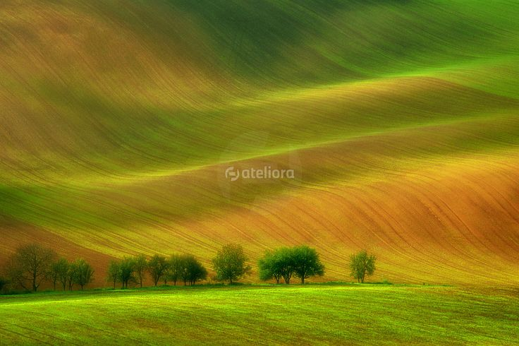 Portal fotograficzny - ateliora.com – fotografia cyfrowa, porady fotograficzne, aktualności.
