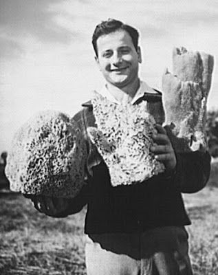 HellenicGenealogyGeek.com - Family History Research Tools for Greek Genealogy: Photograph - 1944 Tarpon Springs, Florida; Greek-American Deep Sea Sponge Fisherman Showing Speciments of Sponges