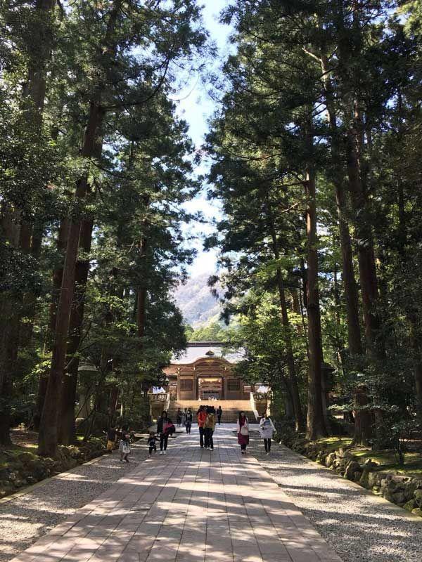 インスタ映えする旅行先? 写真投稿で人気の「日本の観光スポット」、日本人と外国人の違いも