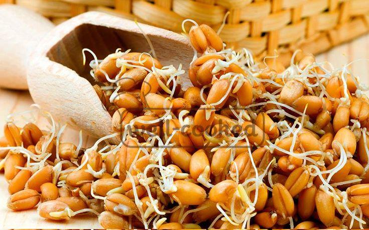 пророщенная пшеница как употреблять