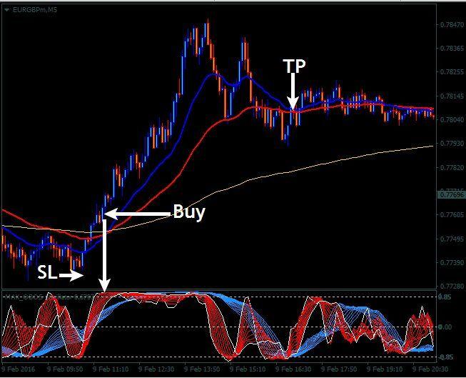 Forex severe scalper trading system