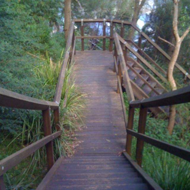 Stairs down to the Bay Run, Balmain, Sydney