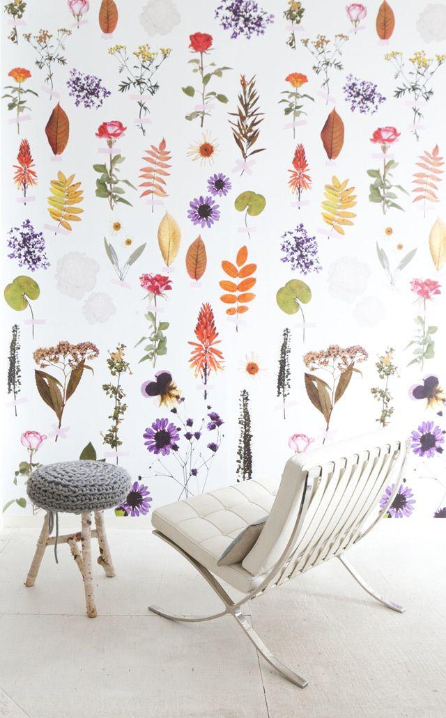 Wallpaper Flowers by Onszelf
