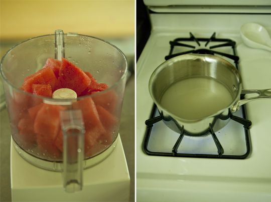 watermelon-lime-sorbet-slices-2