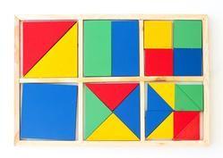 Montessori Fraction Wooden Puzzle (21 pc)