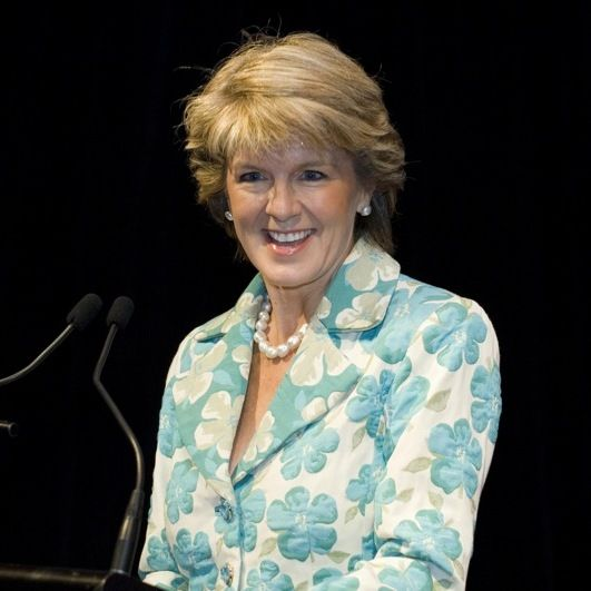 Julie Bishop's lawyerly approach