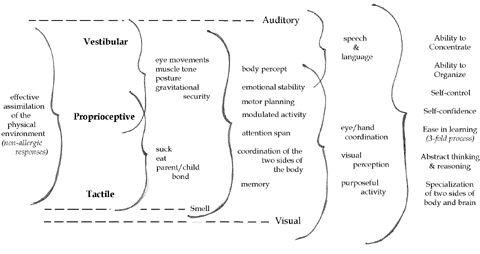 11 best ideas about sensory integration on pinterest for Sensory motor integration disorder