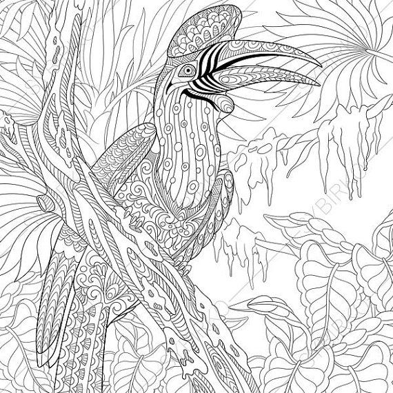 From Coloring Book Zone Exotic Rhinoceros Hornbill Bird Adult By ColoringPageExpress