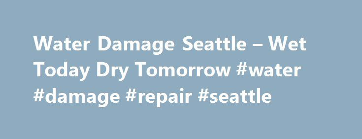 Water Damage Seattle – Wet Today Dry Tomorrow #water #damage #repair #seattle http://netherlands.remmont.com/water-damage-seattle-wet-today-dry-tomorrow-water-damage-repair-seattle/  # Call 206-462-5955 Call 206-462-5955 Call 206-462-5955 Call 206-462-5955 Water Damage Seattle Looking for Water Damage Seattle Pros. We are your one stop source for all of your water, flood, fire, mold and storm damage repair needs. We are just a simple phone call away! Not only can we fix your water problems…