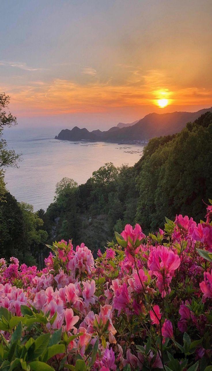 Wunderschöner Sonnenuntergang – Anatoli Hortok