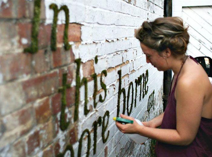 Každý už určite videl takzvané zelené alebo ekologické graffiti, no zväčša iba na obrázkoch. Vytvoriť diela na stene, ktoré sú z machu a teda sú živé, si však môžete vyskúšať aj sami. Natrafili sme na jeden recept (alebo skôr návod), ktorý vyzerá celkom jednoducho, aj keď sami sme ho neskúšali.
