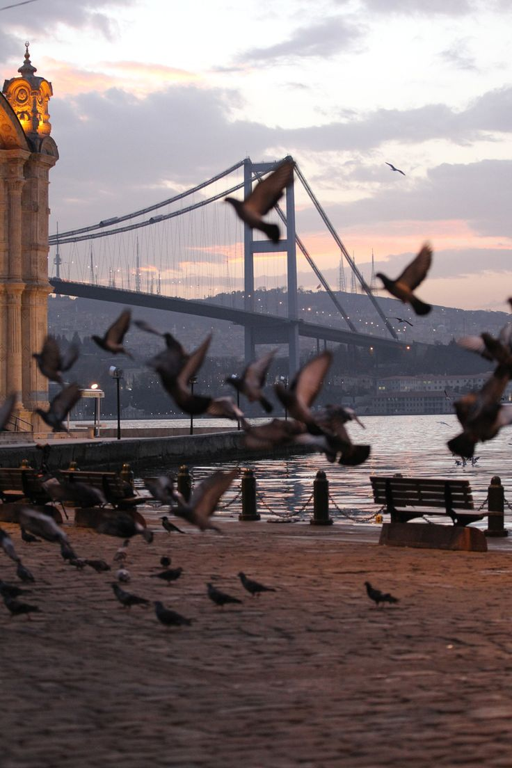 "ahguzelistanbul: ""İstanbul By erkanyazici1 """