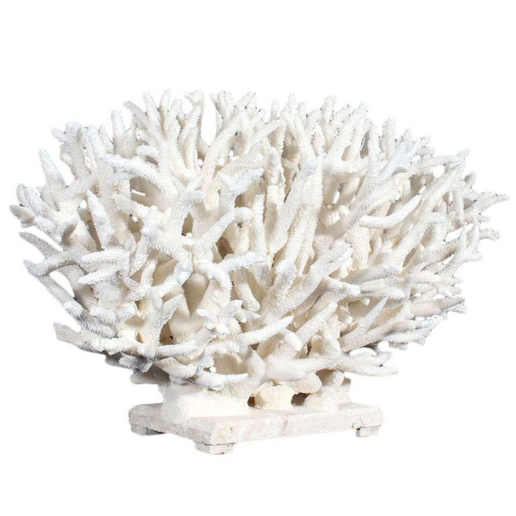 Ideas about coral centerpieces on pinterest