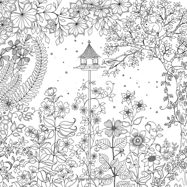Secret garden an inky treasure hunt and coloring book Amazon coloring books for adults secret garden