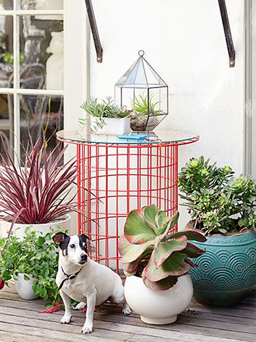 Going to garden this summer? Check out local flea markets for cheap and innovative ways to get all the tools you need.