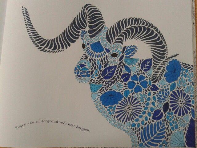 Coloring Book Animal Kingdom Dierenrijk Kleurboek