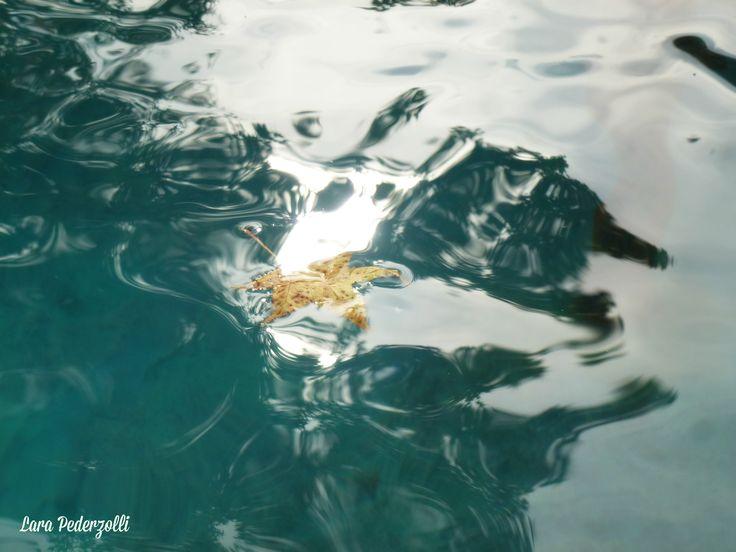 Nuotare nella luce