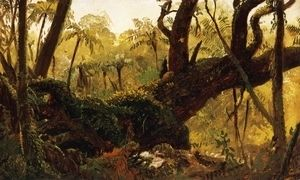 Rain Forest, Jamaica, West Indies  Frederic Edwin Church