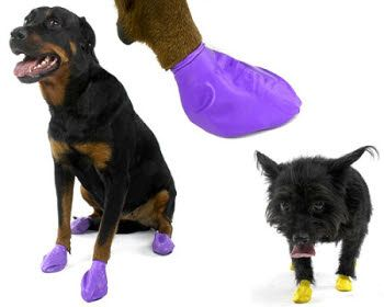Rubber foot pads are another great item to include in your pet emergency kit.  After a disaster there might be wreckage and broken glass and sharp objects covered in who knows what.  Possibly chemicals, garbage, and questionable debris could all be things your pet could be walking on.  If they started licking their paws to clean themselves they might be ingesting things that could make them sick.  Rubber foot pads could definitely be of some help with protecting their feet – both dogs AND…