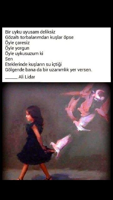 Bir uyku uyusam deliksiz Gözaltı torbalarımdan kuşlar öpse Ali Lidar
