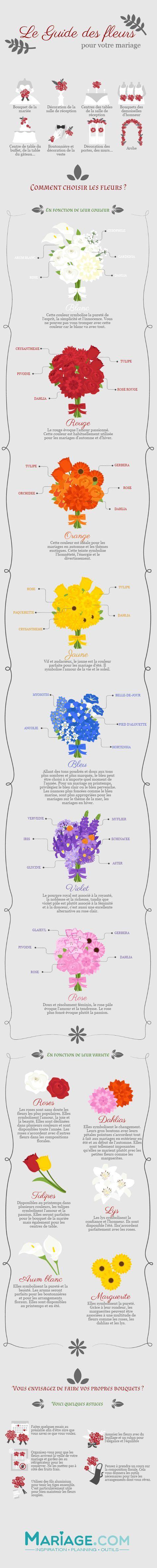 guide des fleurs infographie