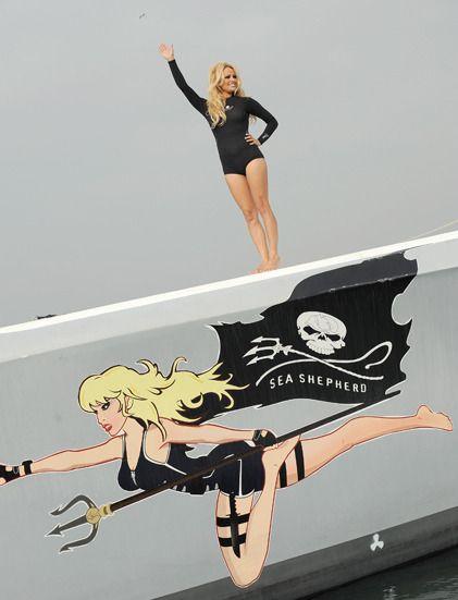 Pamela Anderson se mobilise pour la cause animale auprès de l'ONG Sea Shepherd