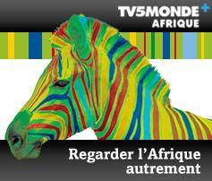 """Sur le site de la """"TV5Monde + Afrique"""" on a beaucoup de vidéos idéales pour travailler la francophonie dans le continent africain. Il y a quelques fiches pédagogiques pour exploiter les vidéos ici: http://enseigner.tv5monde.com/collection/francophonie-en-afrique"""