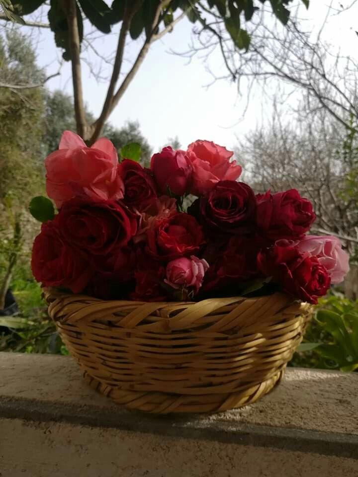 سلة ورد من سورية Decorative Wicker Basket Wicker Baskets Basket
