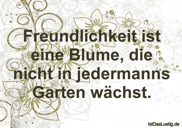 Freundlichkeit ist eine Blume, die nicht in jedermanns Garten wächst. ... gefunden auf https://www.istdaslustig.de/spruch/185/pi