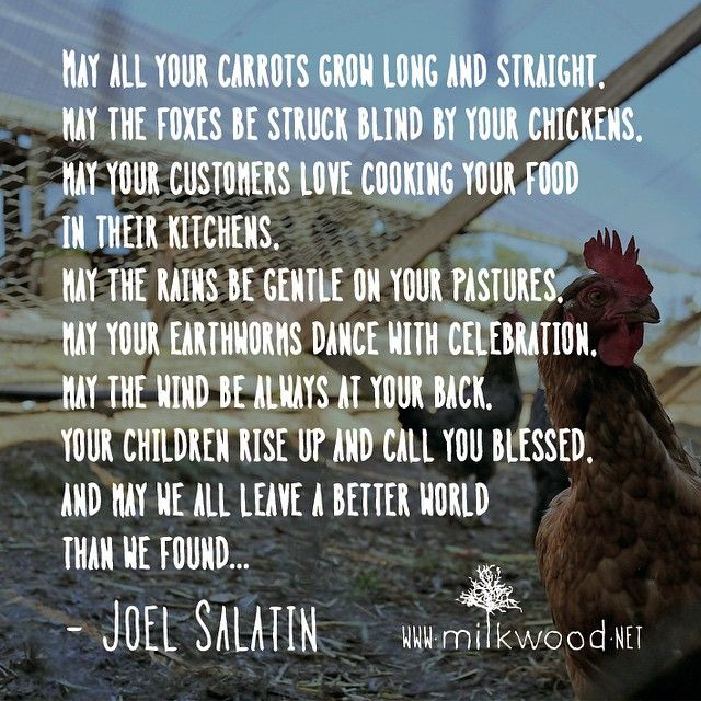 """A massive THANK YOU to all the fine folks we met in Sydney + Melbourne at Joel Salatin's You Can Farm masterclasses this weekend. Good growing and gentle…"""