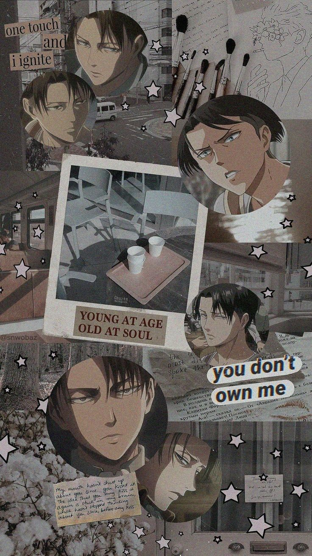 Levi Ackerman Cute Anime Wallpaper Anime Wallpaper Iphone Aesthetic Anime