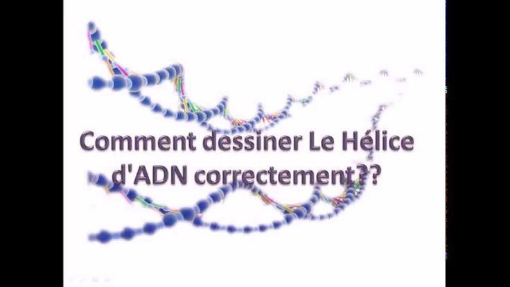 Cette vidéo explique comment dessiner la molécule d'ADN sous la forme linéaire du de brin complémentaire et antiparallèle. Pour plus de vidéos rejoignez notre page facebook: https://www.facebook.com/pages/Monde-Bio/738171982929795?ref=hl
