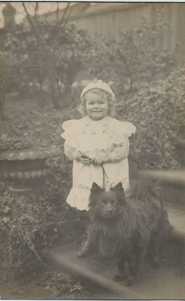 POMERANIAN SPITZ & SMALL CHILD REAL PHOTOGRAPHIC DOG POSTCARD