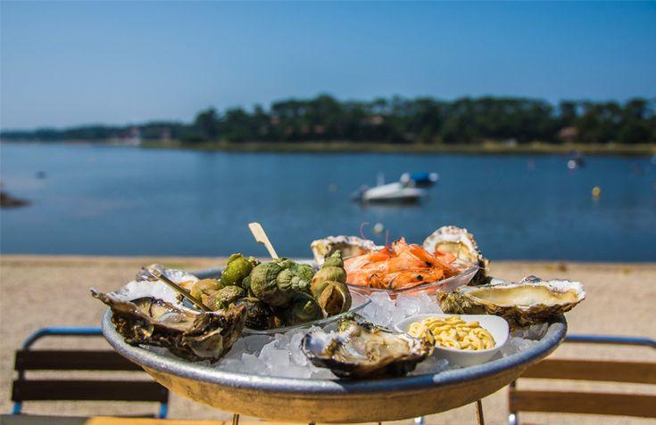 Hossegor, dégustation d'huîtres sur le lac