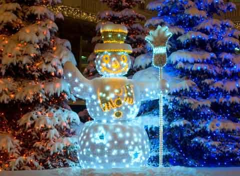 Outdoor christmas lights 32 pinterest outdoor christmas lights ideas snow sculpture dolls mozeypictures Image collections