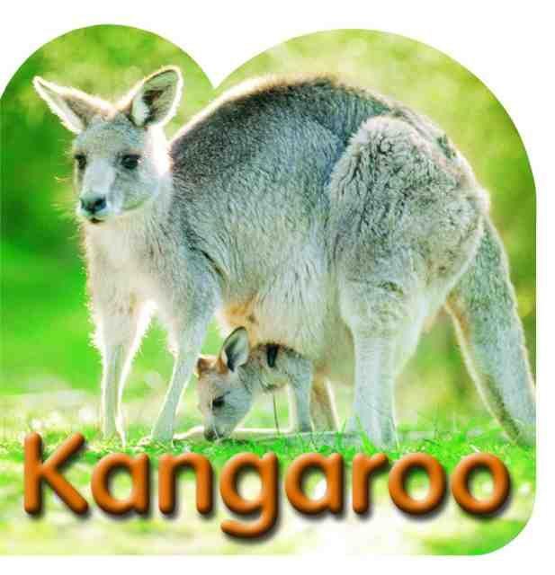 diecut-board-book-kangaroo-1396930079-jpg