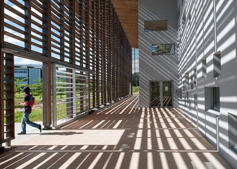 New University Library in Cayenne by RH+ Architecture