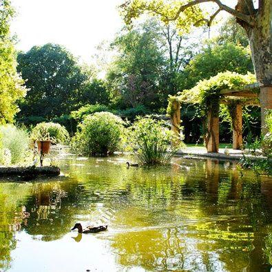 Descubriendo el Parque de María Luisa (Sevilla) - Descubrimos la historia y los secretos del parque de María Luisa en Sevilla