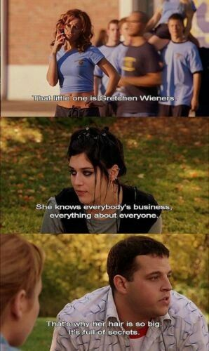 theme of mean girls Today is the tenth anniversary of mean girls the film, directed by mark waters and written by tina fey, opened on april 30th, 2004 and earned a surprising.