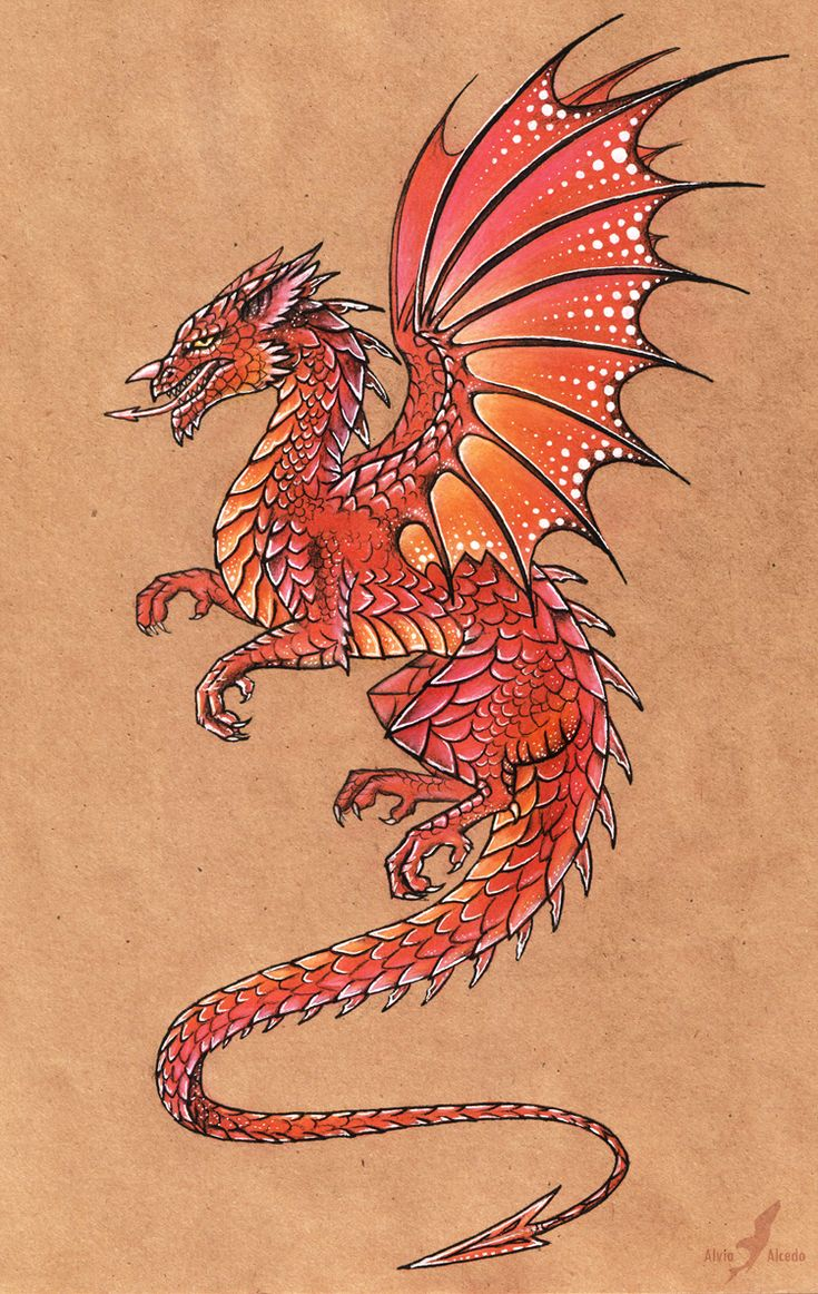 Welsh dragon by AlviaAlcedo.deviantart.com on @deviantART