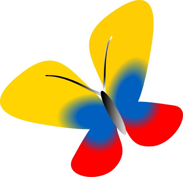 Mariposa con los colores de la bandera de Colombia