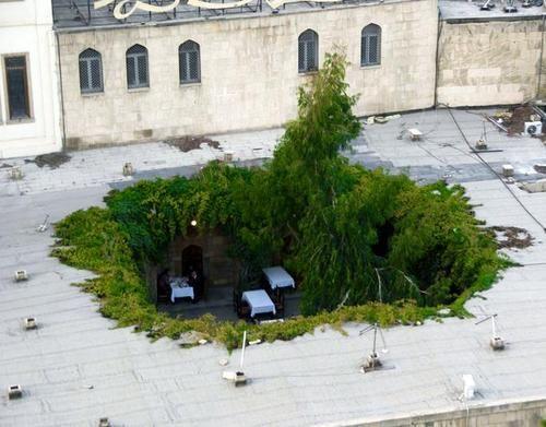 Een restaurant in Baku heeft een gat in het dak geslagen om een patio te creëren. De randen zijn netjes afgewerkt met groen. Een boom in het midden doet de rest. Na een kleine zoektocht heb ik ontdekt dat het moet gaan om de Mugan Club. (via pornforblindmagazine:)