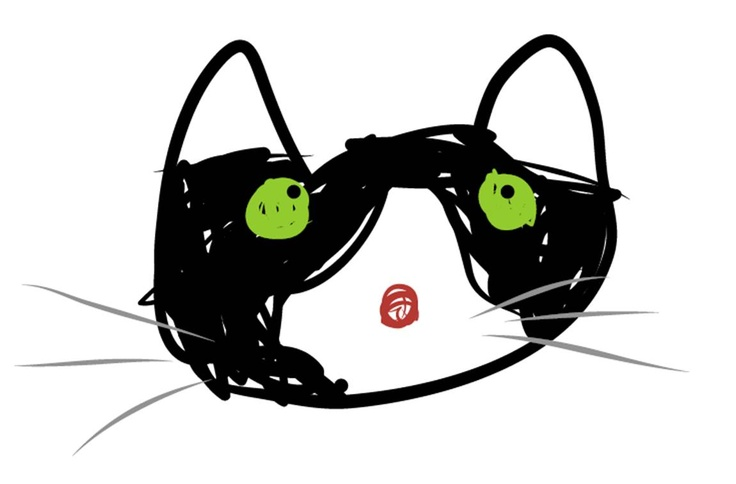 A cat made with Adobe Ideas