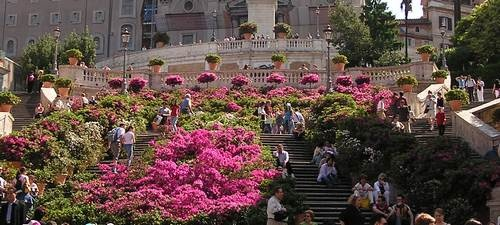 The Spanish Steps, Rome, Italy, in May, covered in azaleas.  A beautiful sight.
