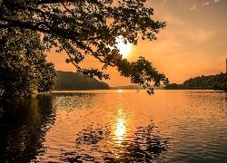 Jezioro, Drzewo, Wschód, Słońca