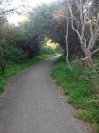 Mornington - Coastal Walk - Foreshore Reserve   Pram WalksPram Walks