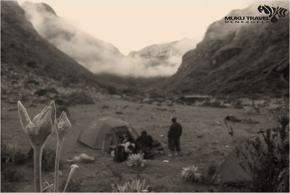 #trekking #camping #mountain #Merida #LosAranguren #Venezuela